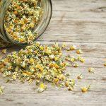 Chamomile-Flowerd